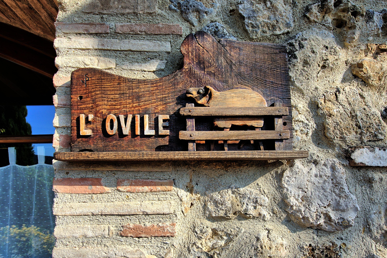 Ovile